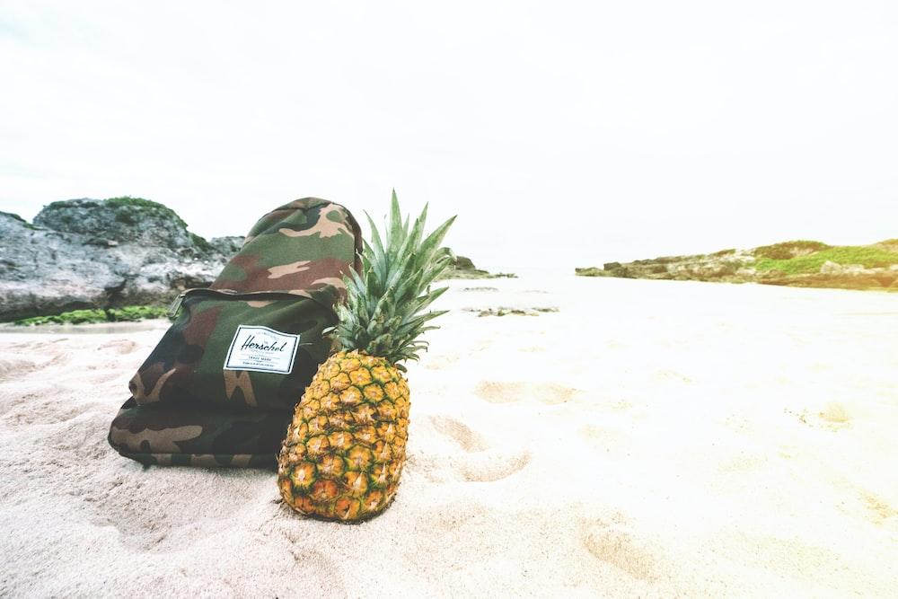 pineapple beside backpack