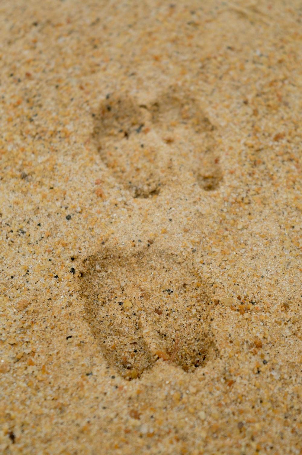 foot prints on sands