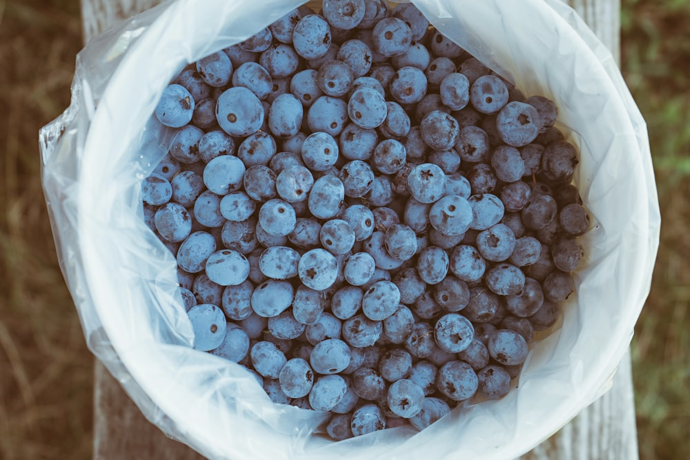 blueberries in plastic container