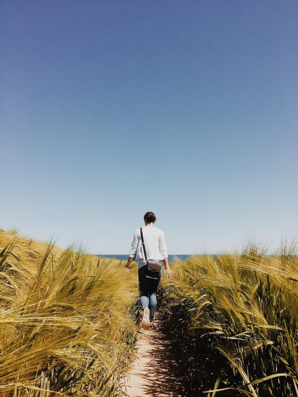 woman walking of wheat field
