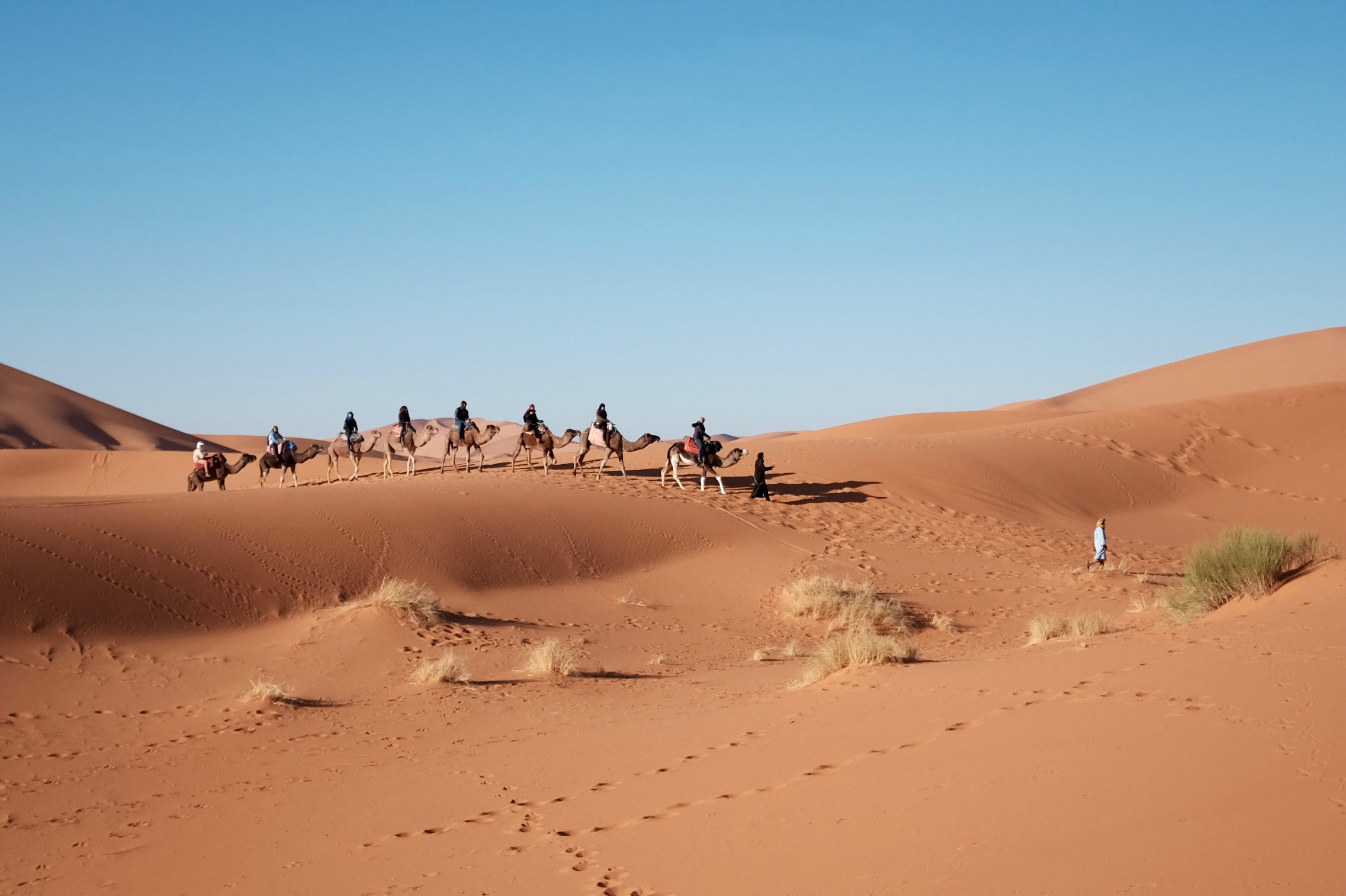 People ride camels through the dry desert sand dunes
