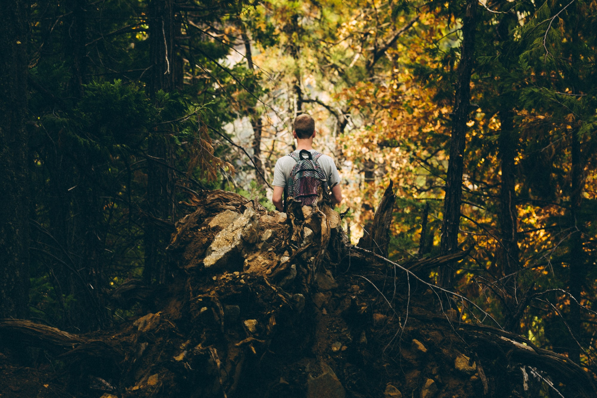 man with backpack in forest