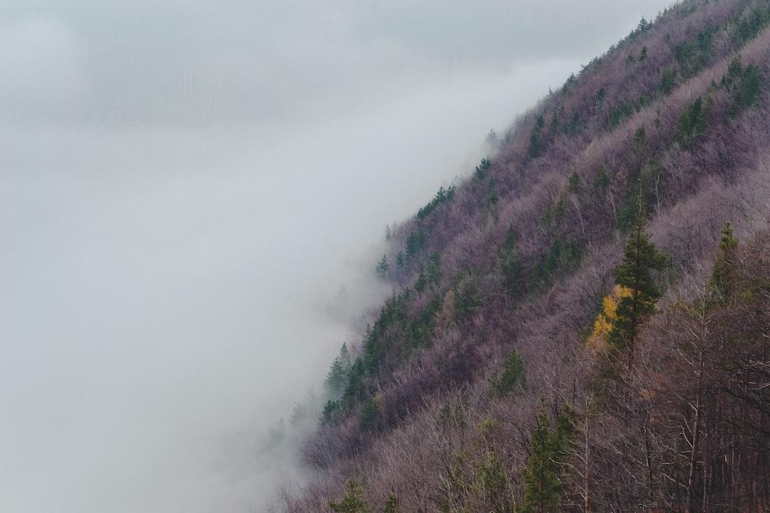 Mist below a brown slope