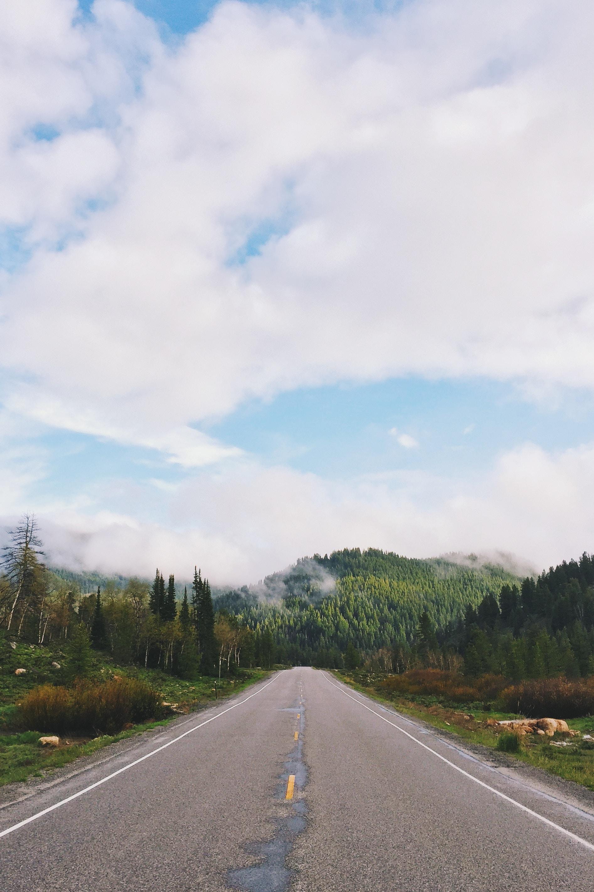 A straight asphalt road into the mountains in Beaver Mountain Ski Area