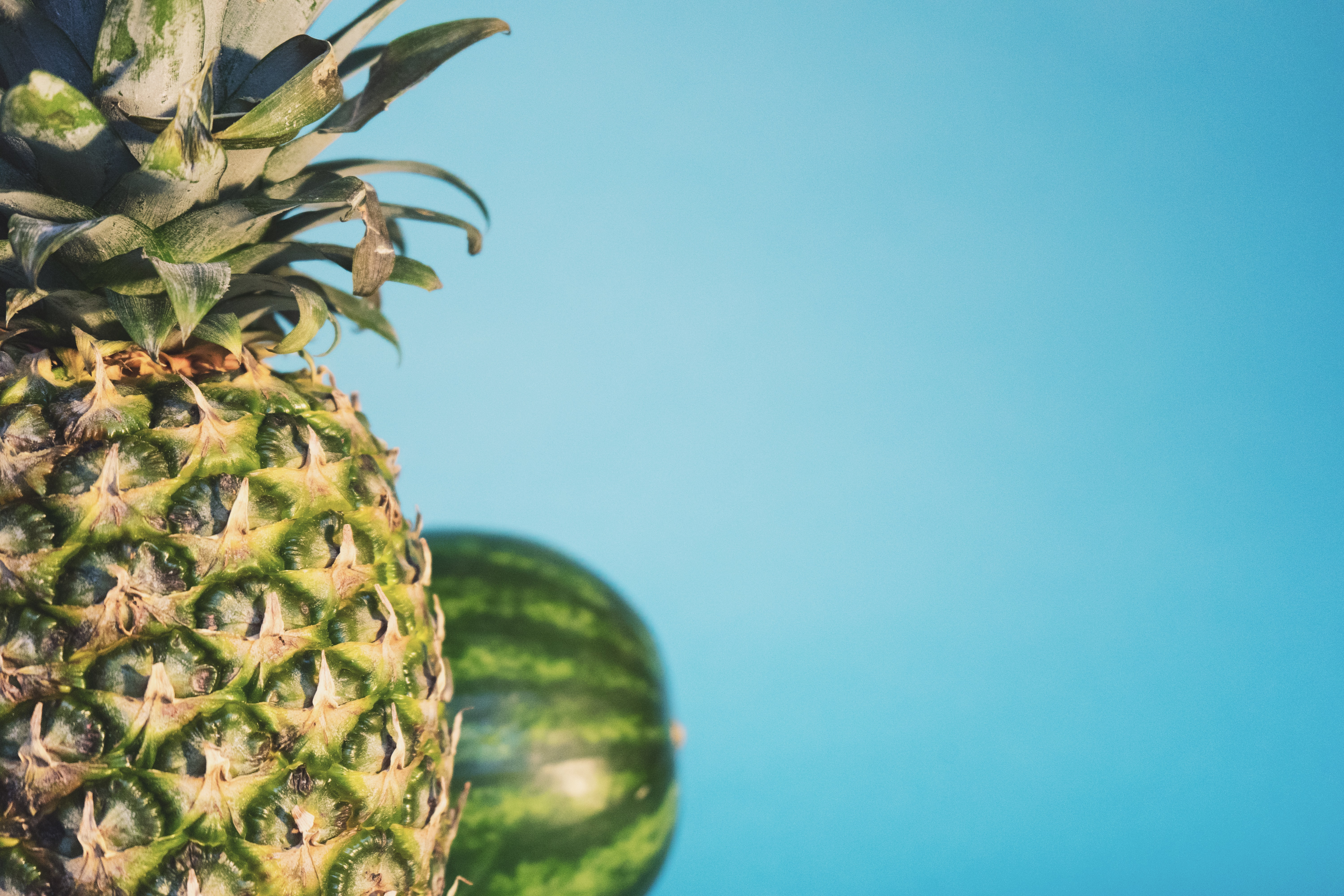 Pineapple and watermelon against a turquoise blue background