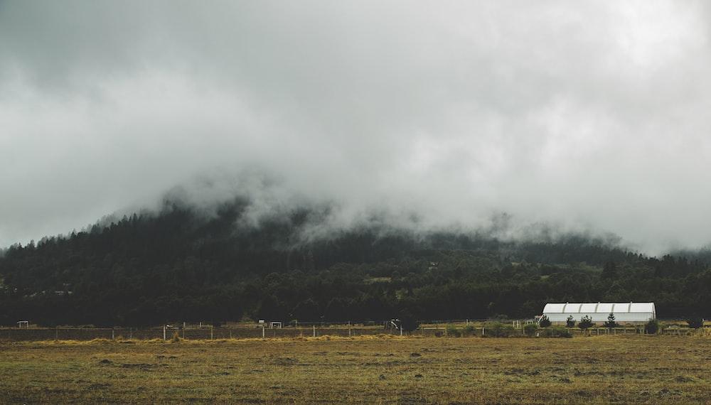 white tank near green mountain