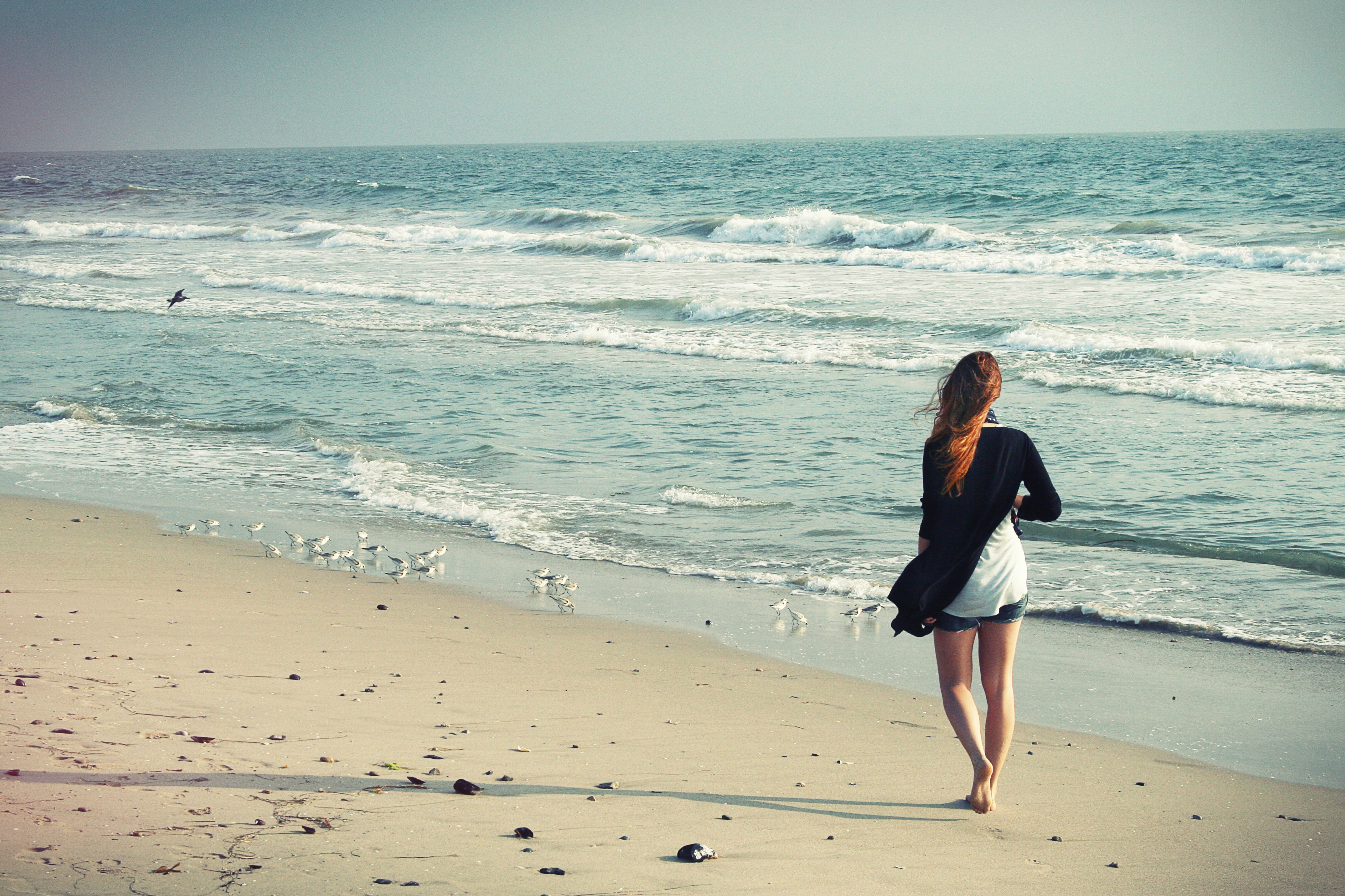 Woman walking on a sand beach coastline filled with seagulls at Venice Beach