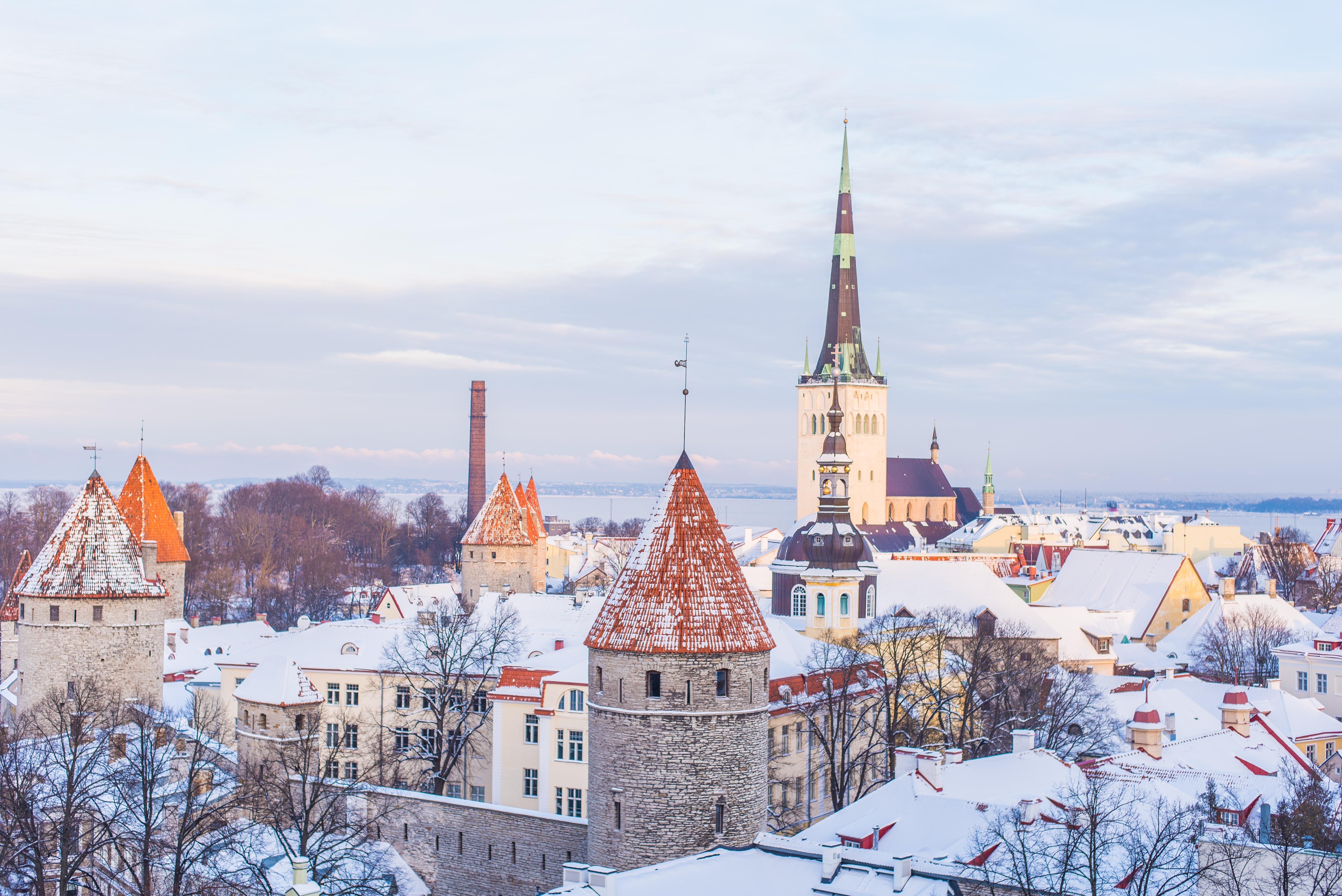 Millised võimalused on Eestis IT-d õppida?