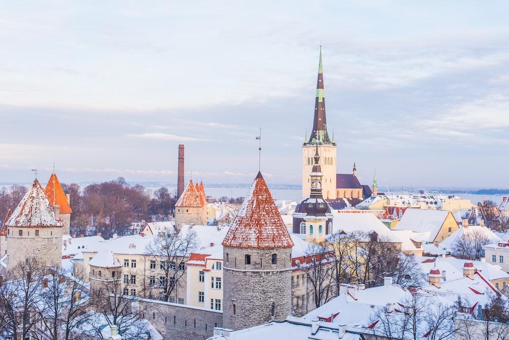 کشور استونی کجاست