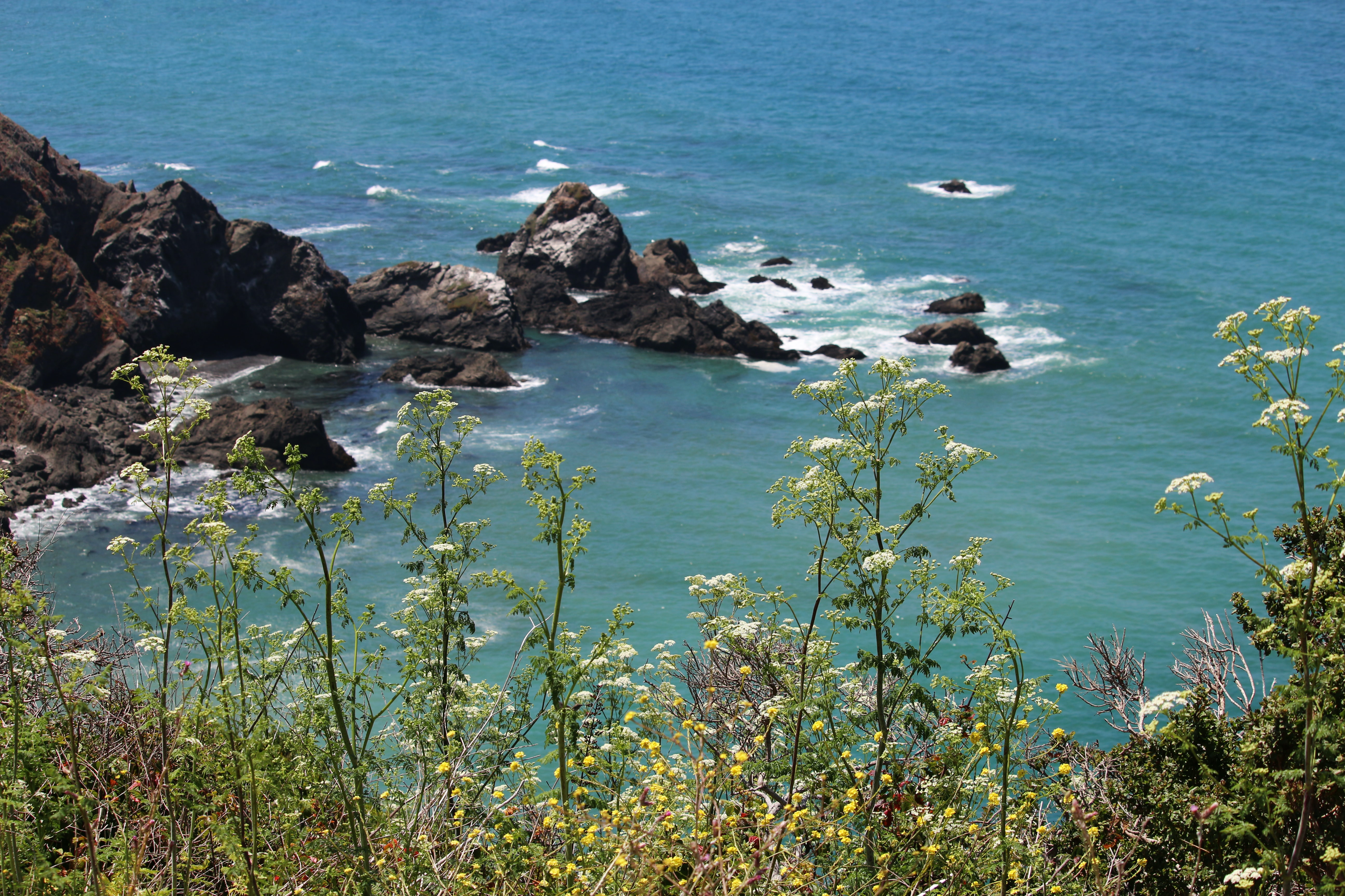 Rocky shoreline viewed from a tall grass hill at Little River