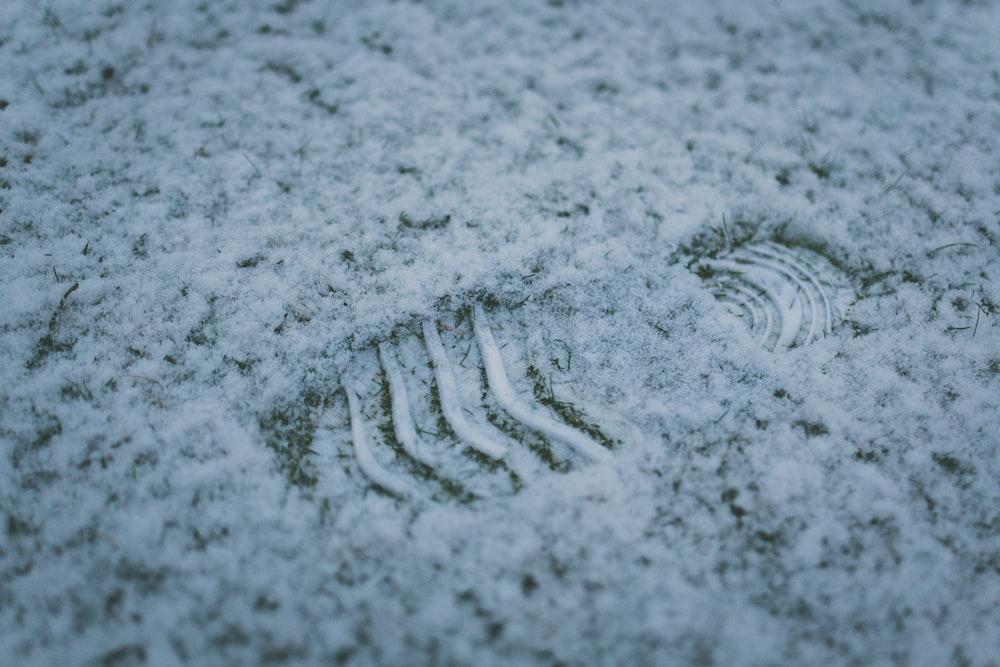 macro photography of footprint