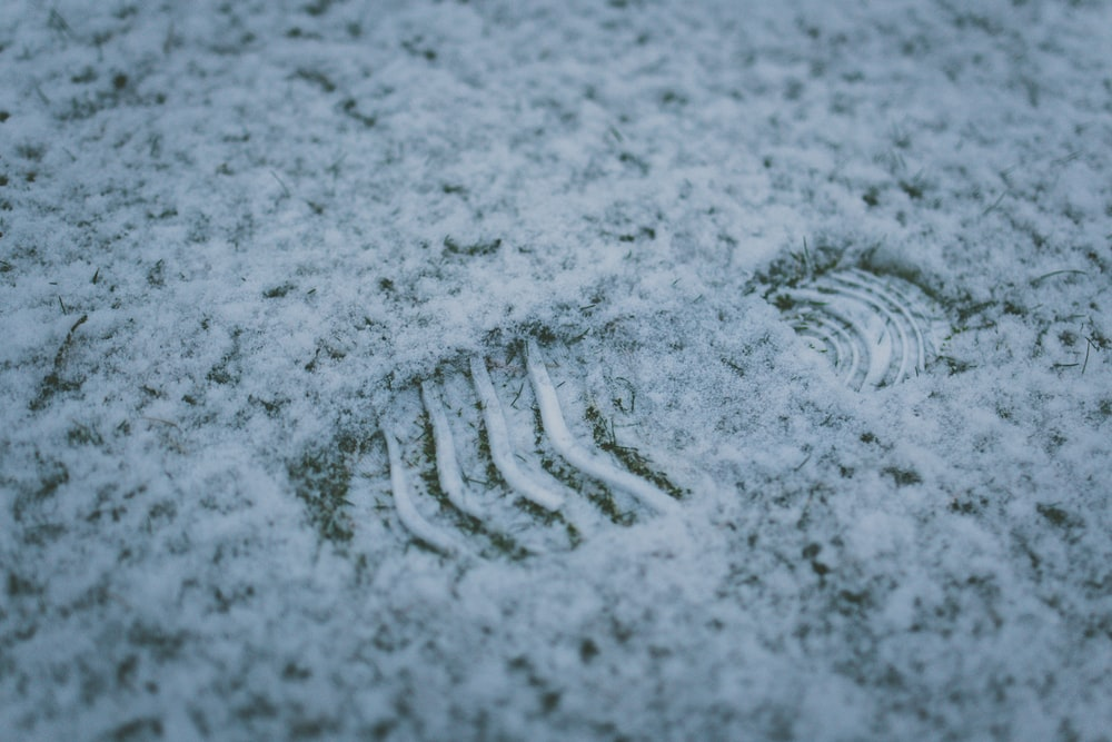macro photography of footprint