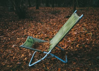 folding lounger on dried leaves