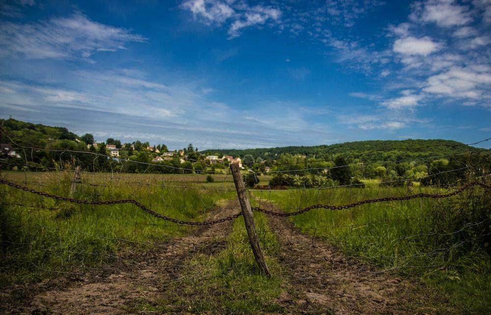 green field near mountains photography