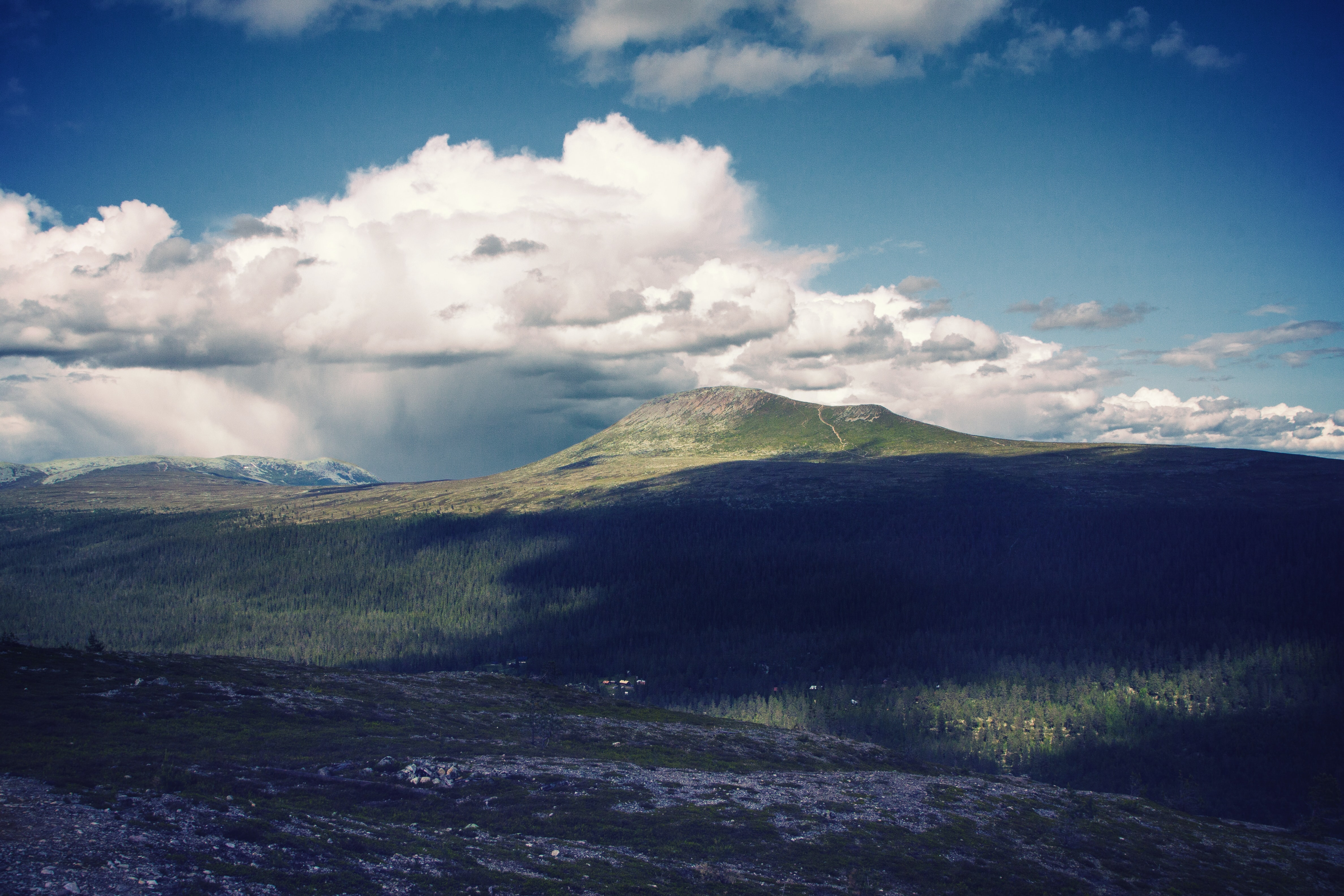 Shadows of clouds on a vast forest in the highlands