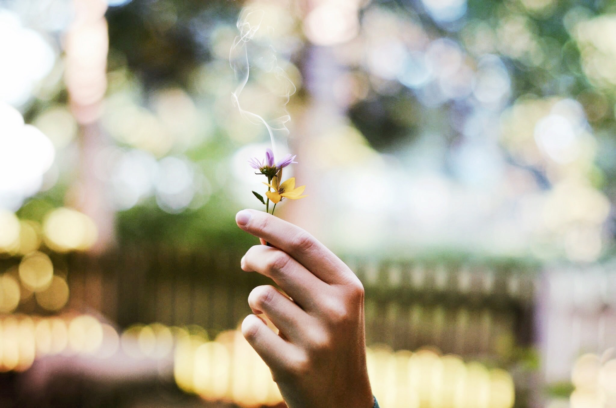 A person holding up two small flowers with smoke rising from their petals