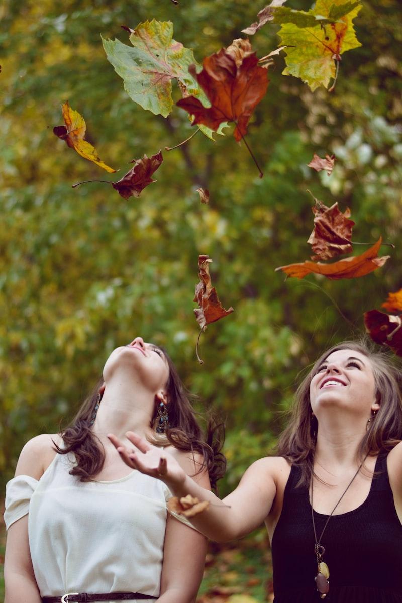 樹懶哈哈笑 愛情 分手 失戀 難過