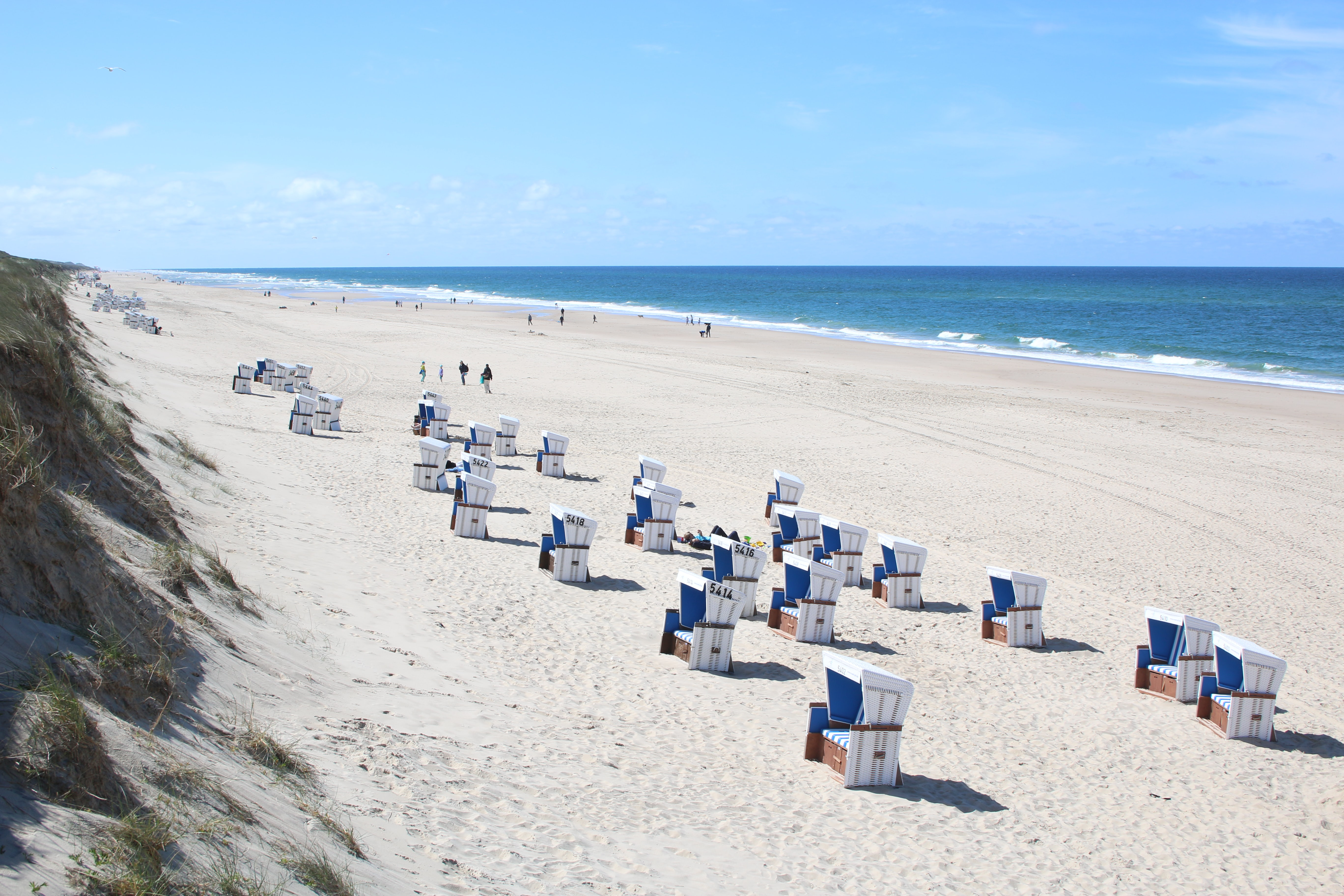 Beach chairs on the sandy shore for summer relaxation and vacation at Rantum