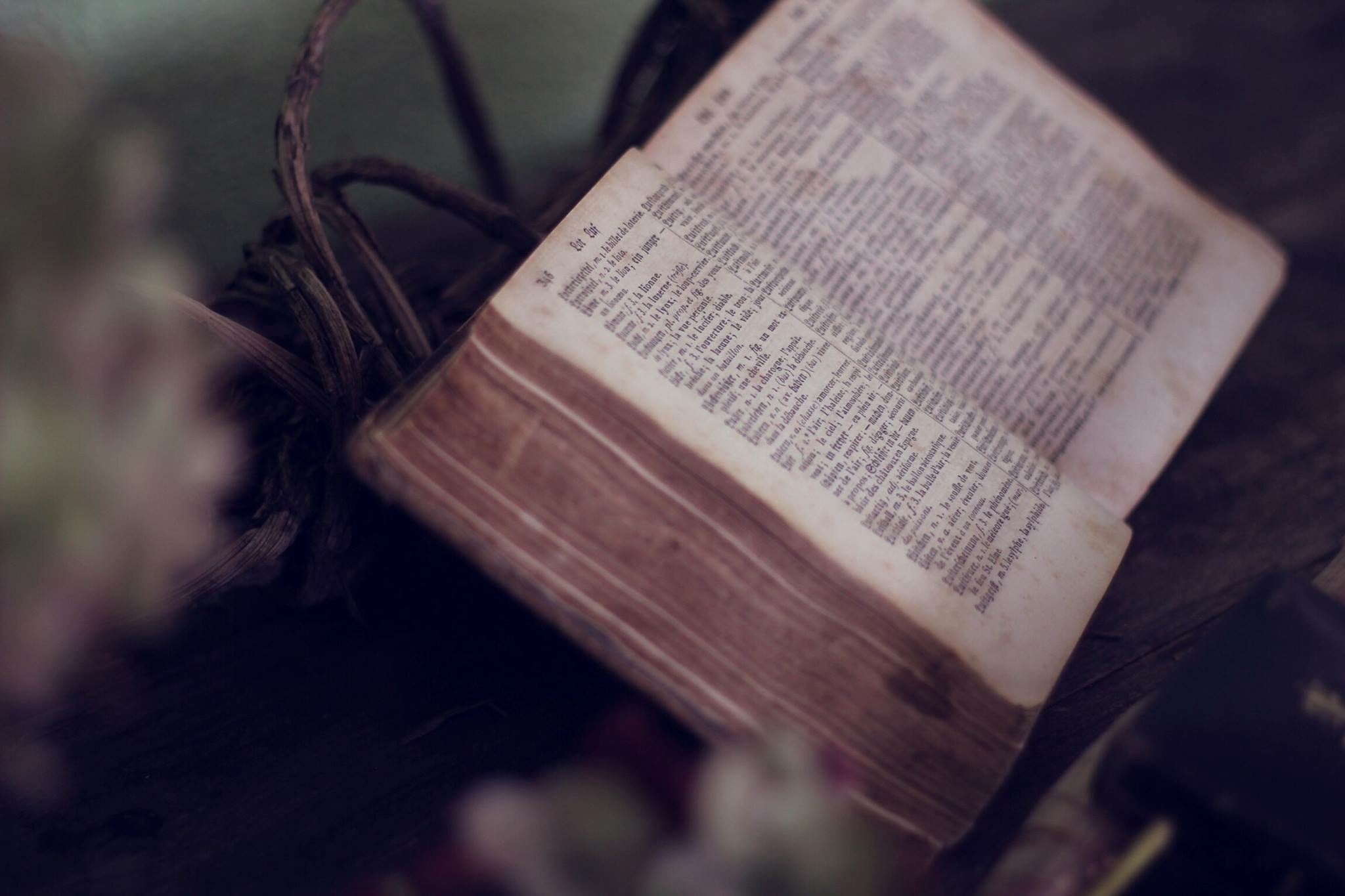 close up photo of bible opened near flowers