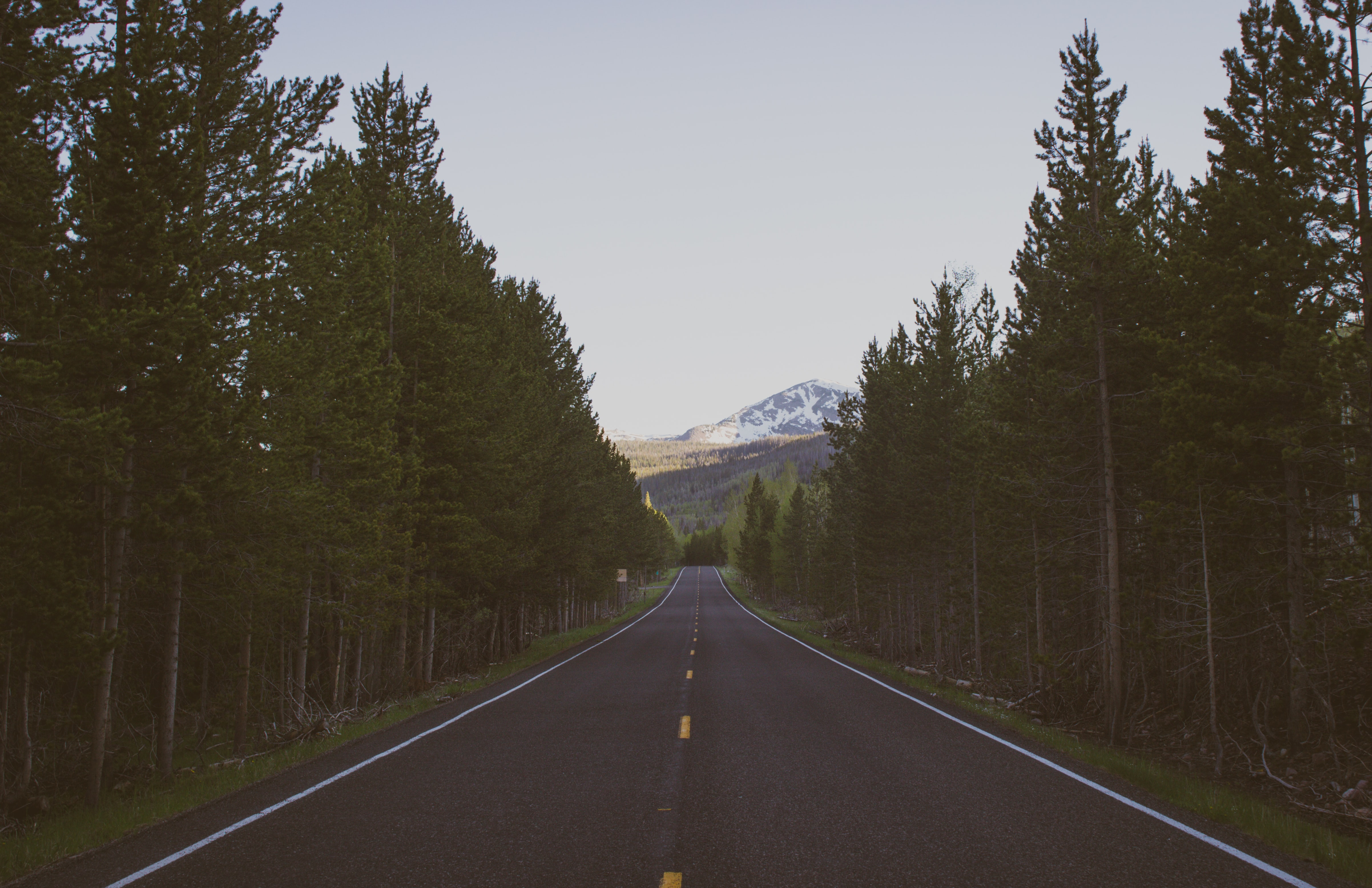 A straight asphalt road leading into snowy mountains