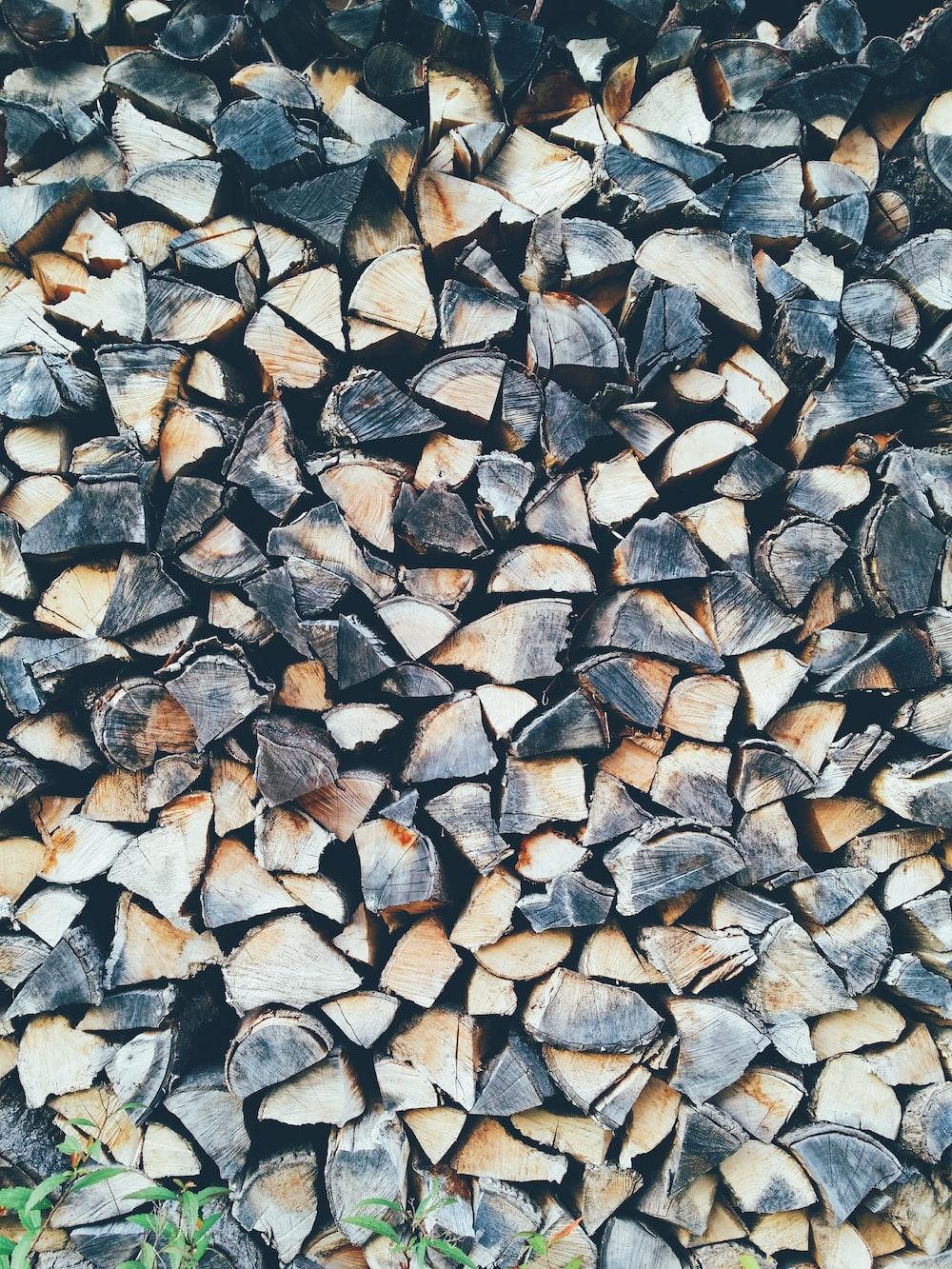pile of cut woods