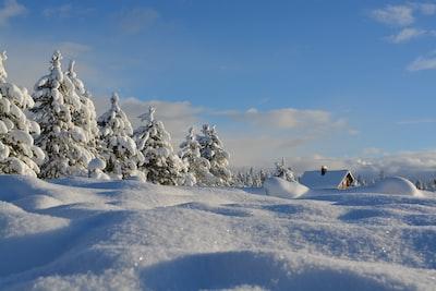 Christmas morning winter wonderland in Island Park Idaho.