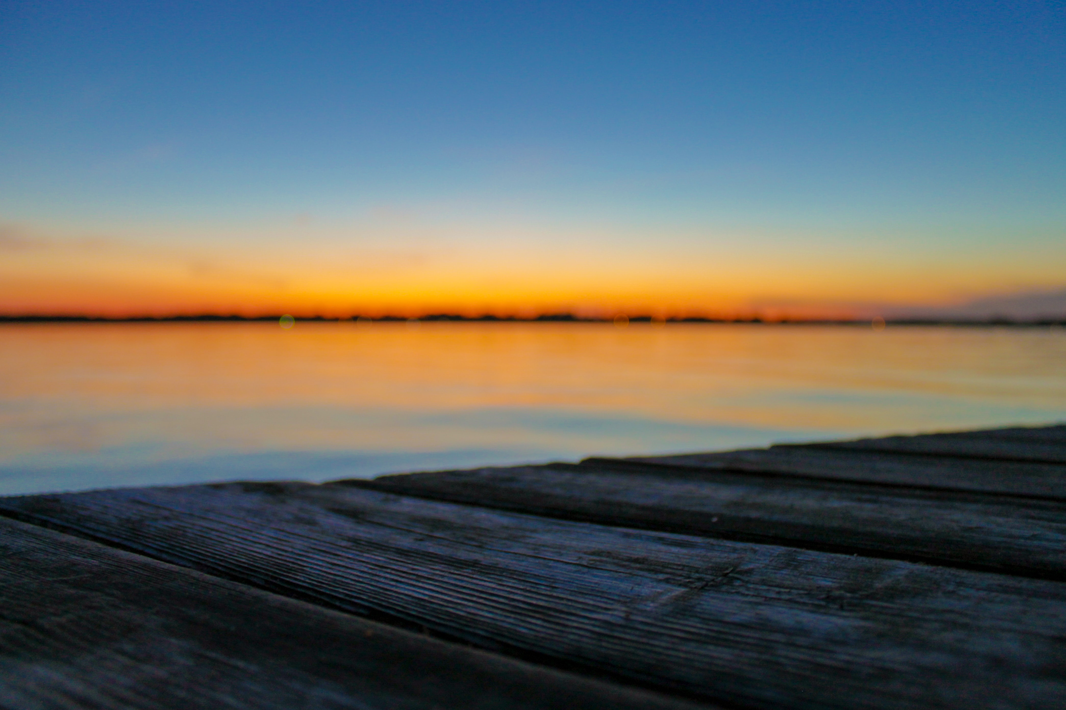 selective focus photo of brown wood planks in front of beach during golden hour