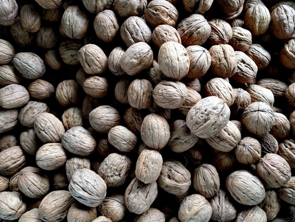 bundle of white seeds