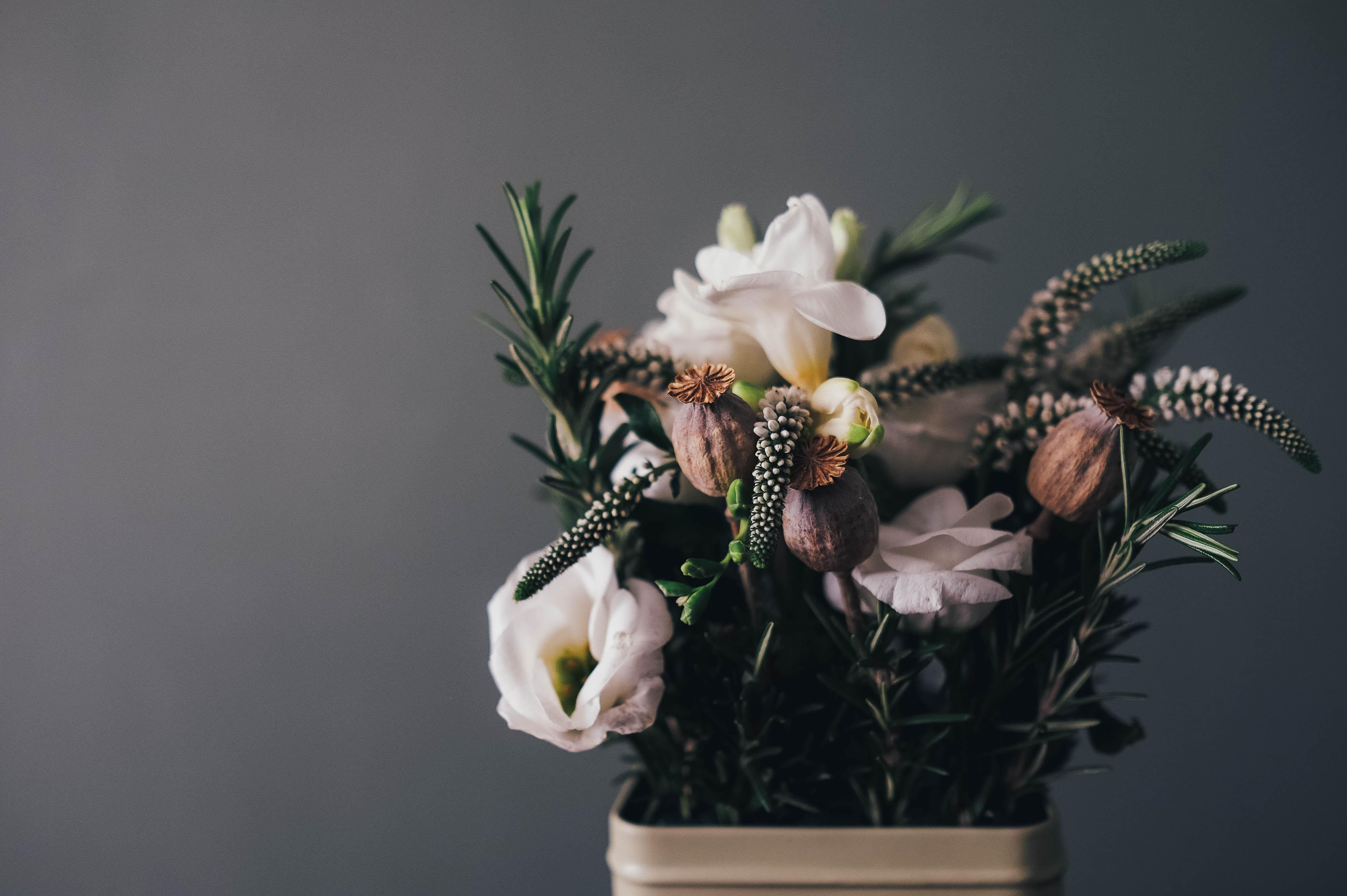white petal flowers in gray pot in room