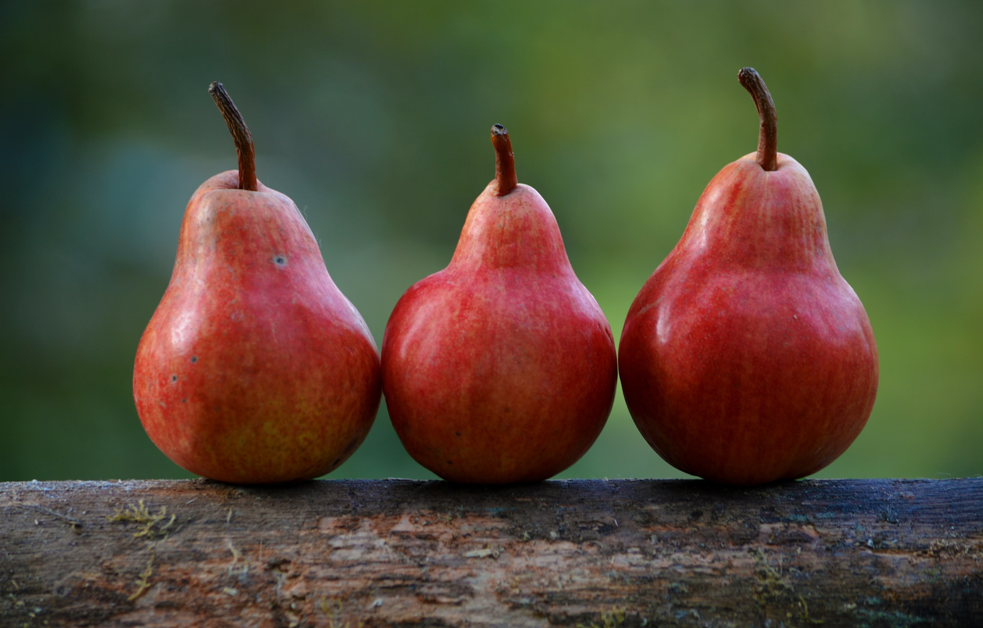 Three red pears on a ledge outside