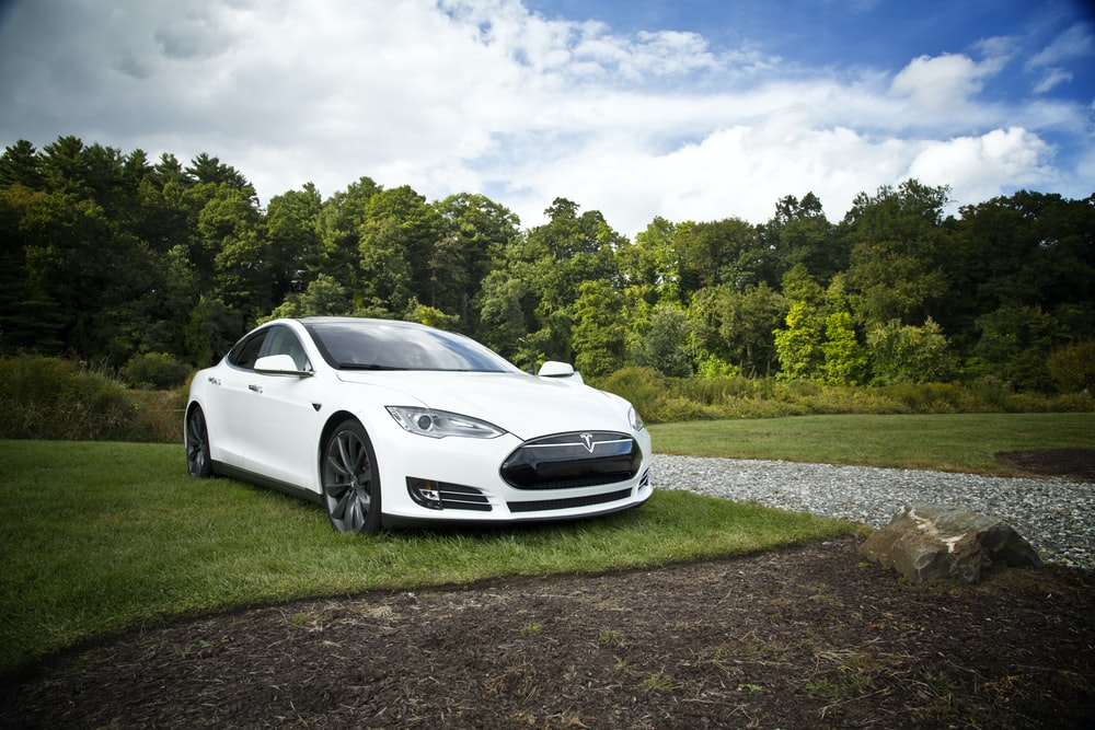white tesla parked on green grass lawn during day time