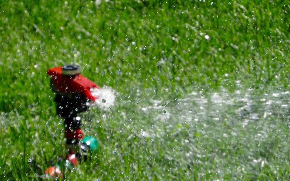 red garden sprinkler