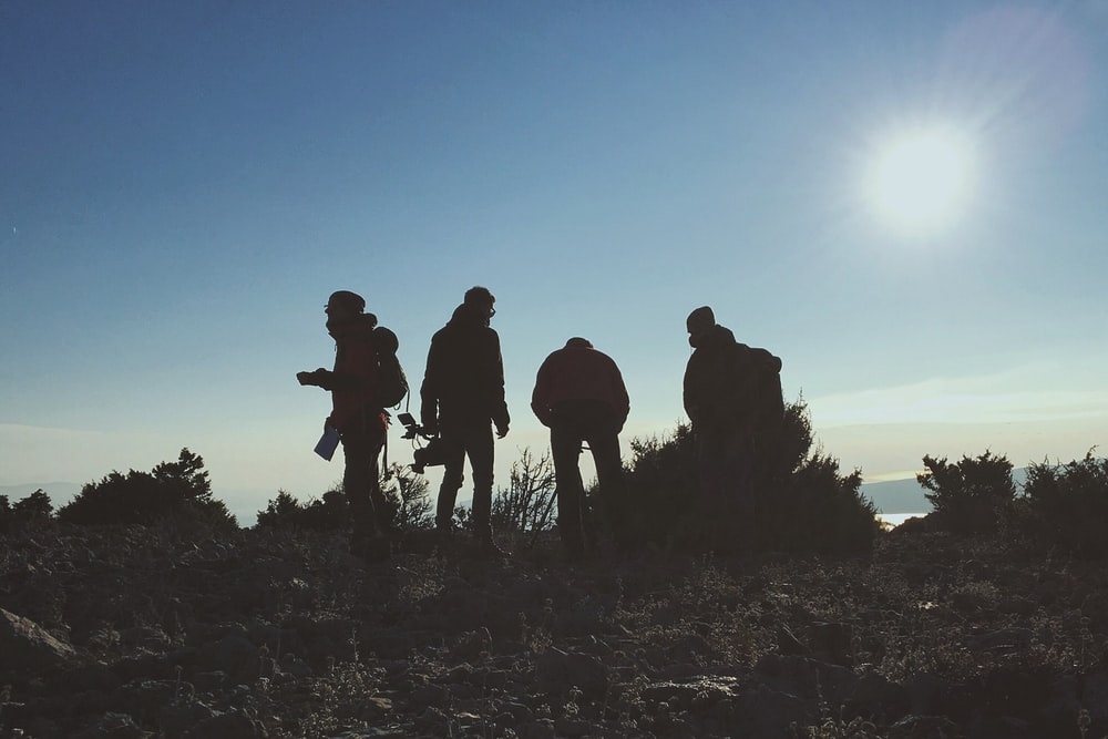 silhouette of four men standing near green plant