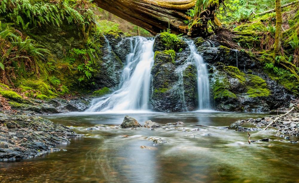 water falls near green trees