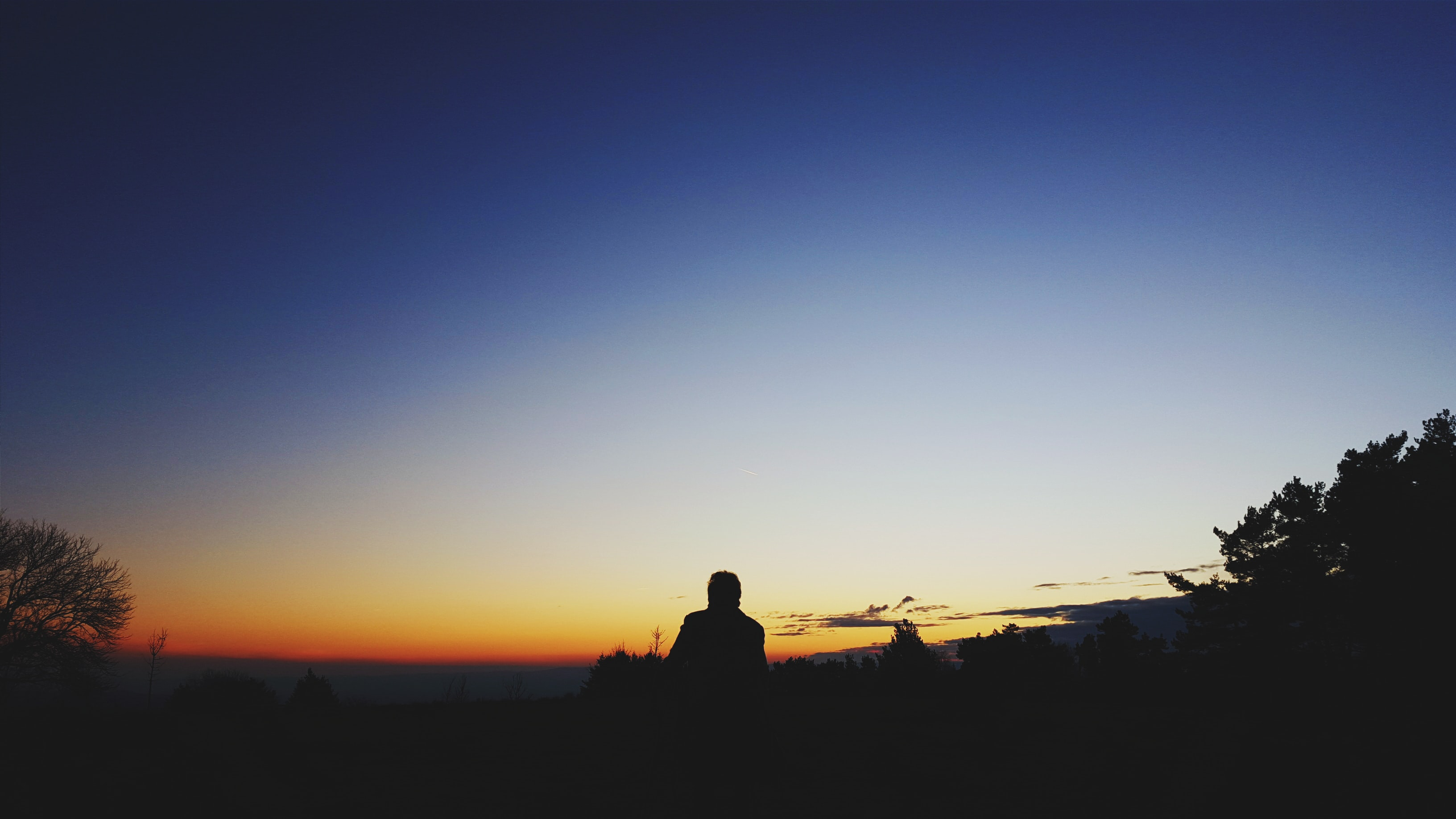 silhouette photo of man standing near trees at golden hour