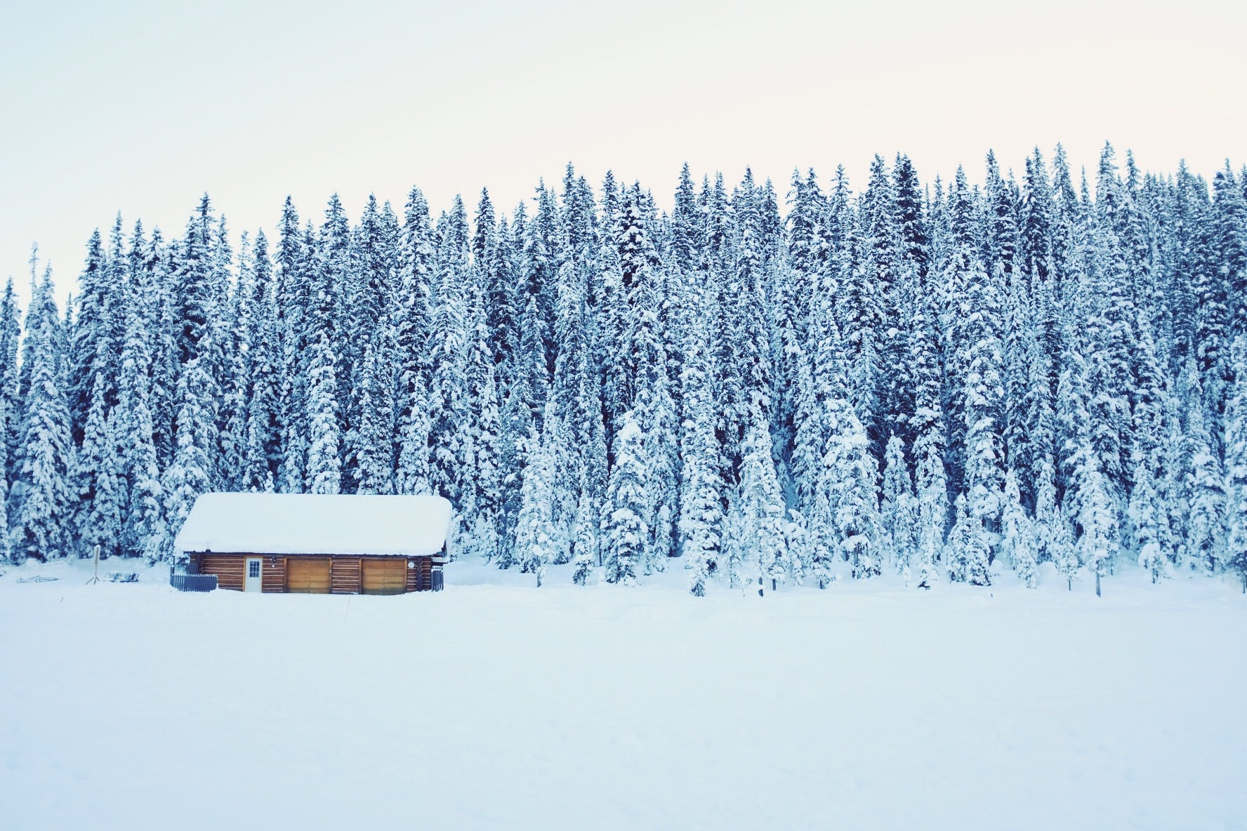 A log cabin next to a tree-lined forest after a heavy snowfall
