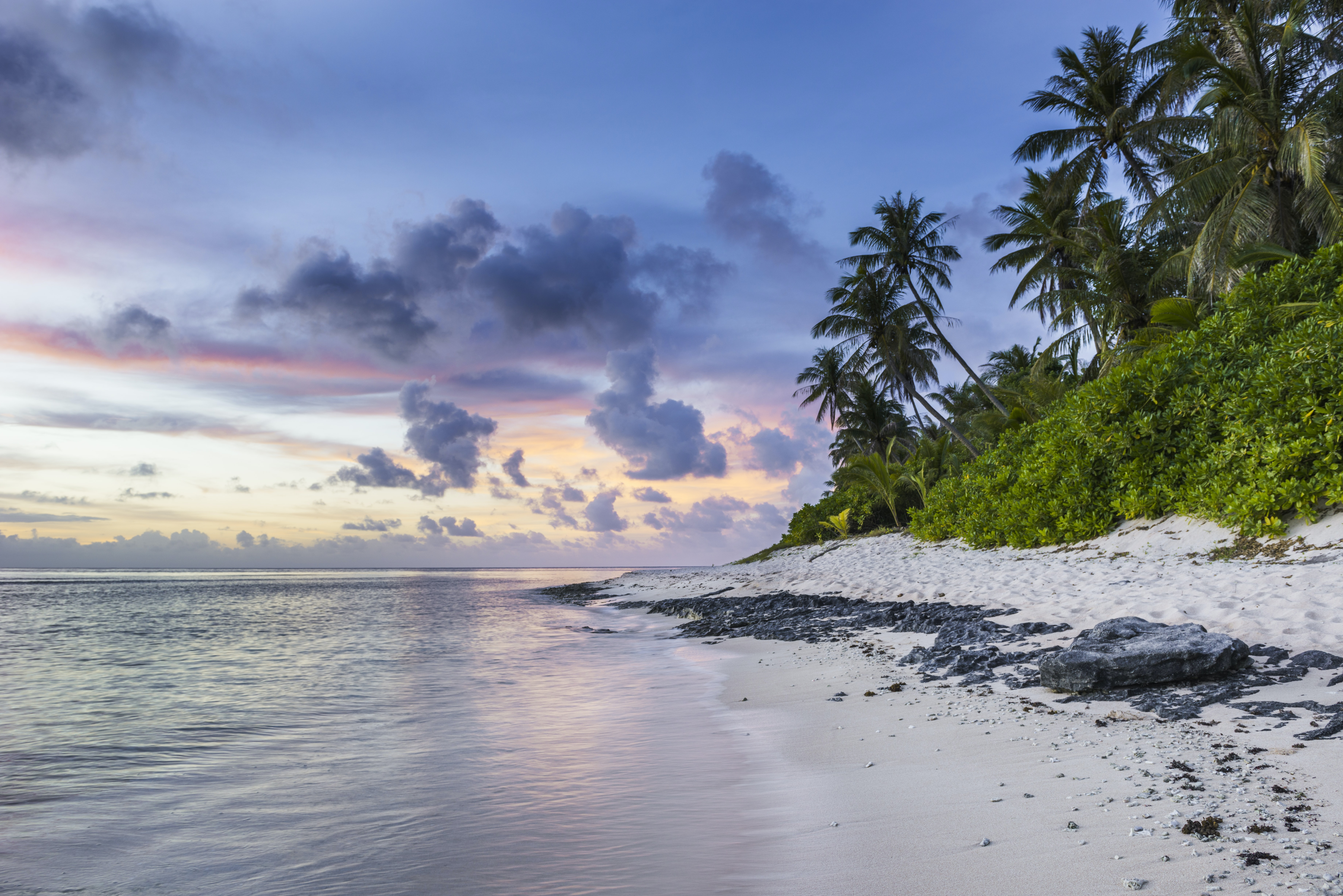 A beautiful beach and palm trees during sunset