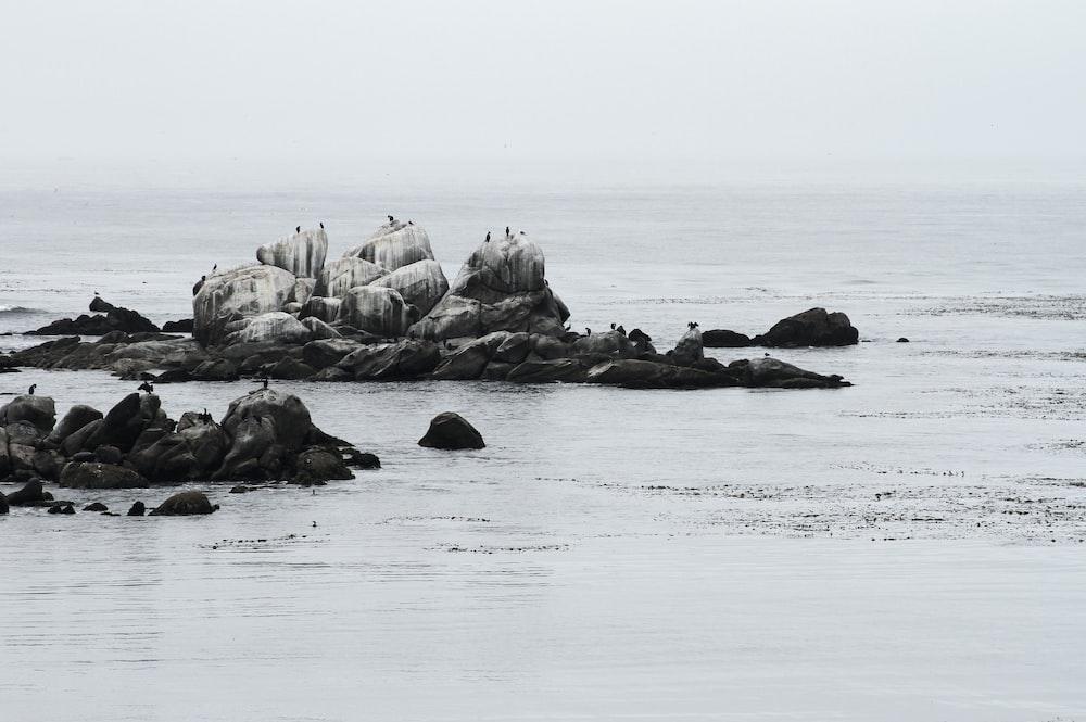 landscape photography of seashore rocks