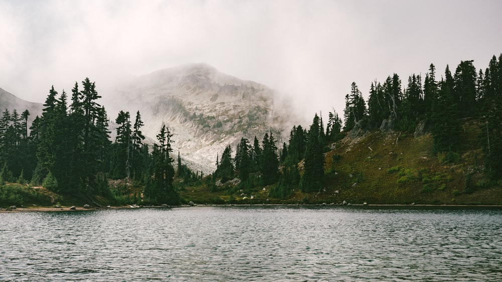 lake in forest near mountain
