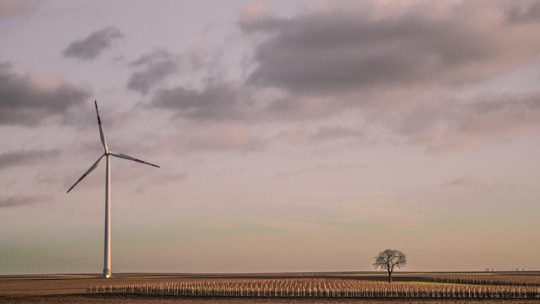Windmill field