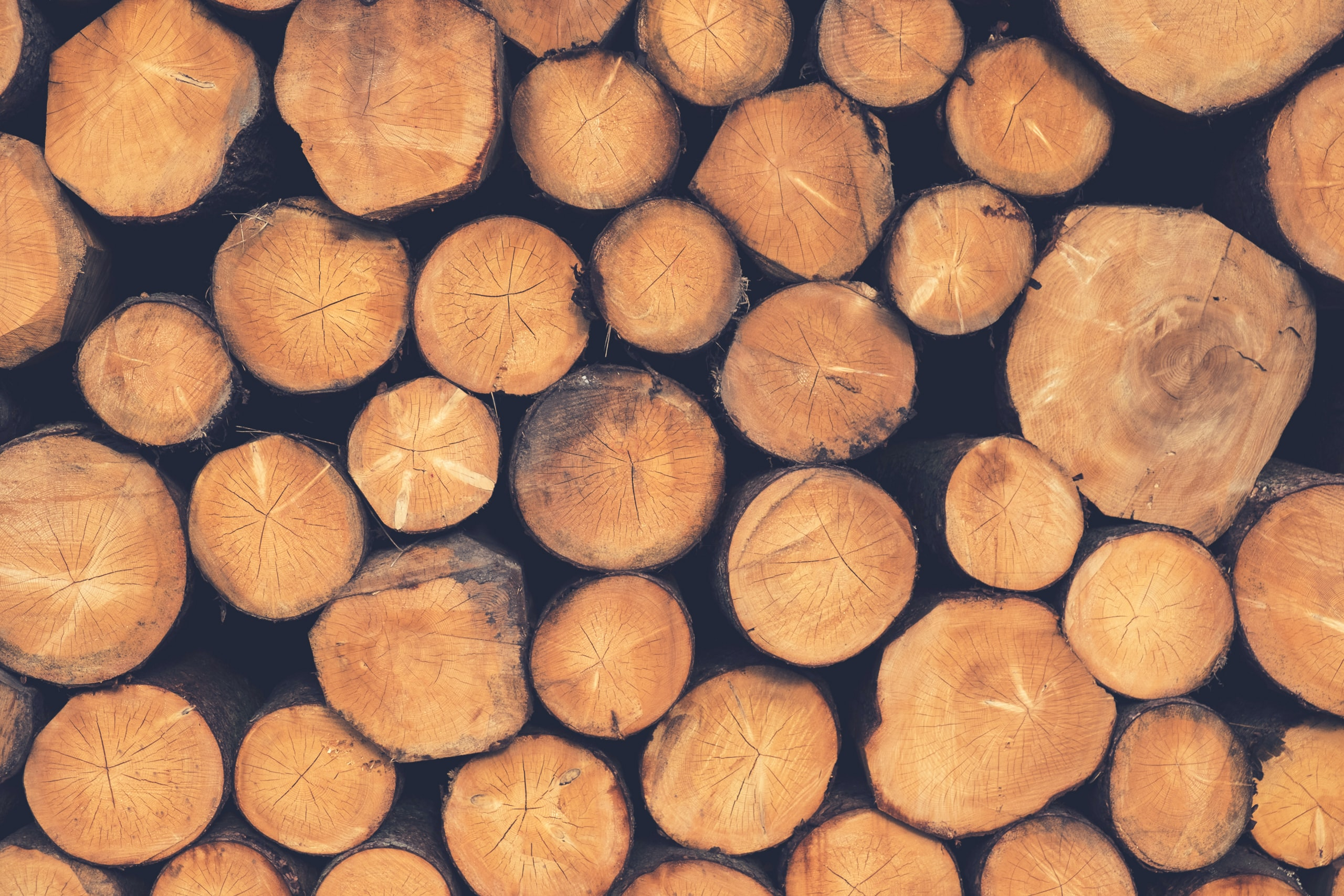 A stack of sawn logs in various sizes
