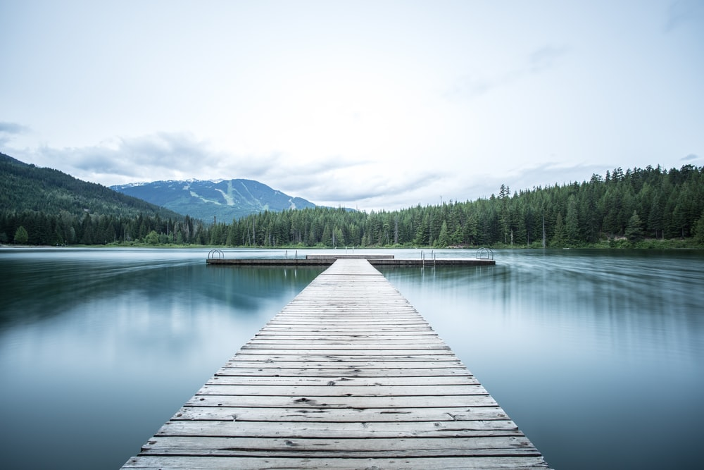 gray wooden sea dock near green pine trees under white sky at daytime