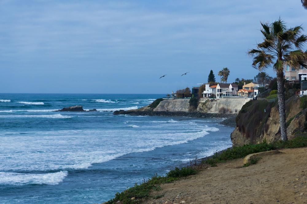 houses near ocean