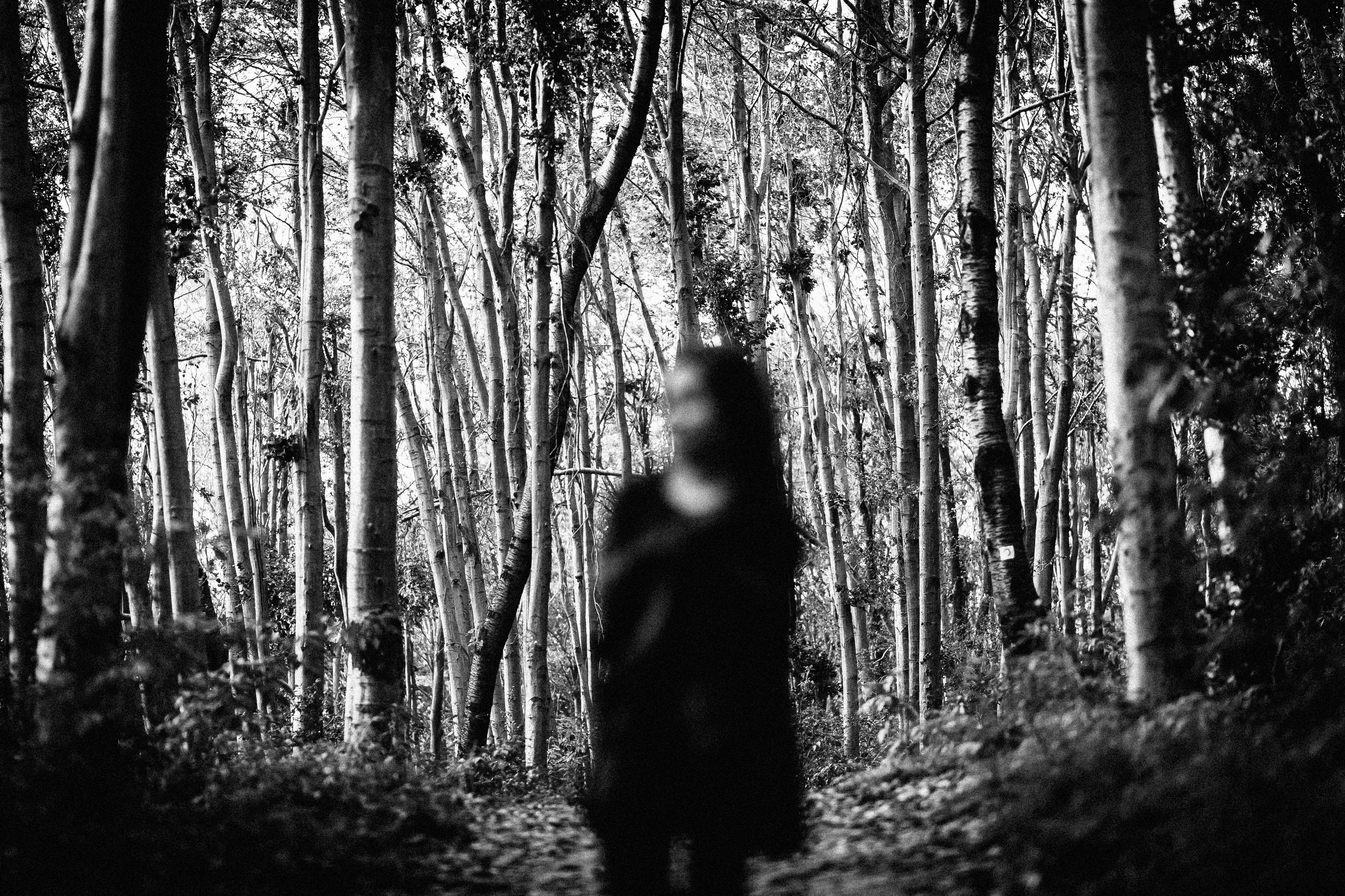 A blurred image of a person standing in the woods.