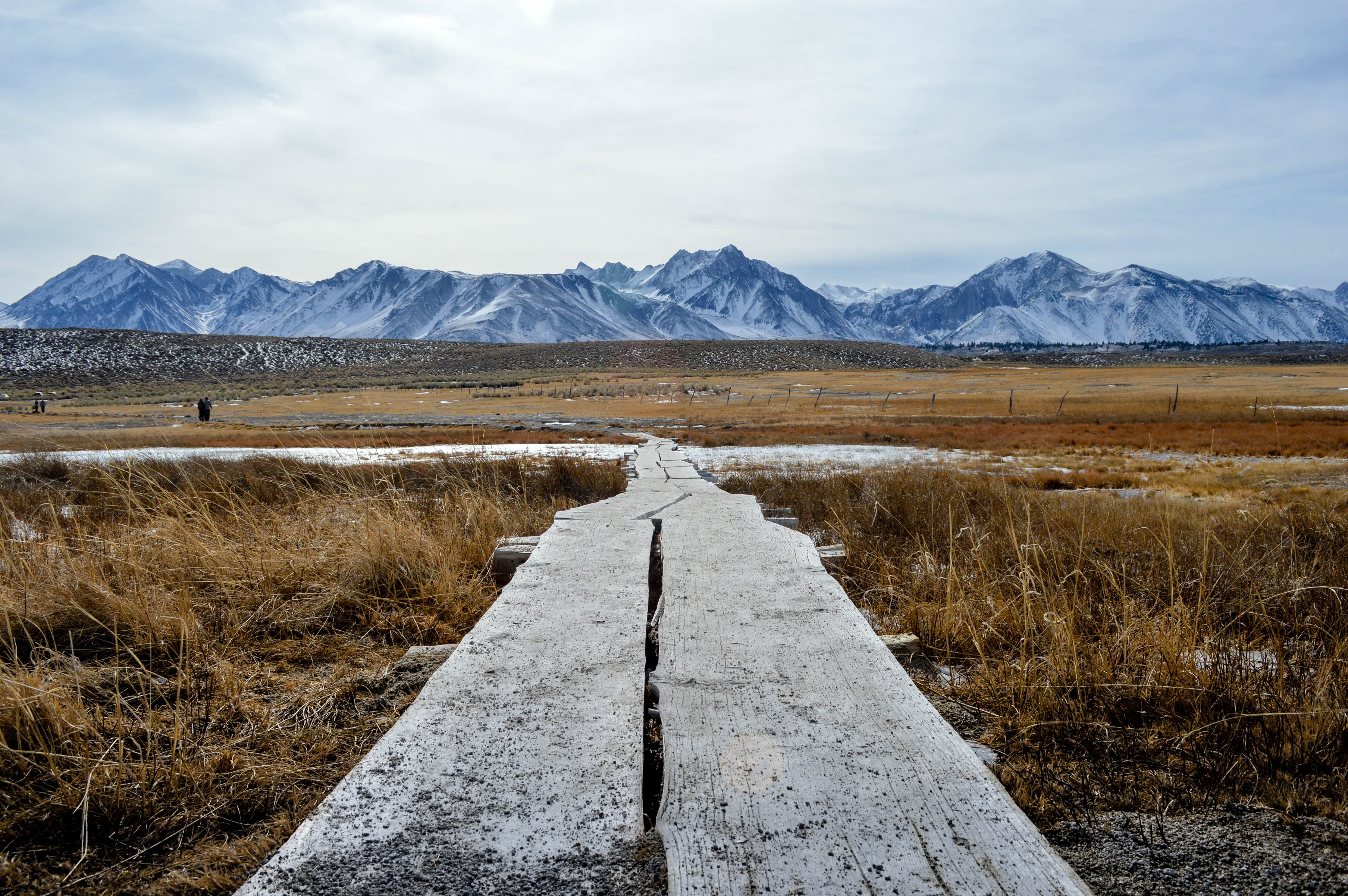 Walking path leads through barren brush toward snowy mountains