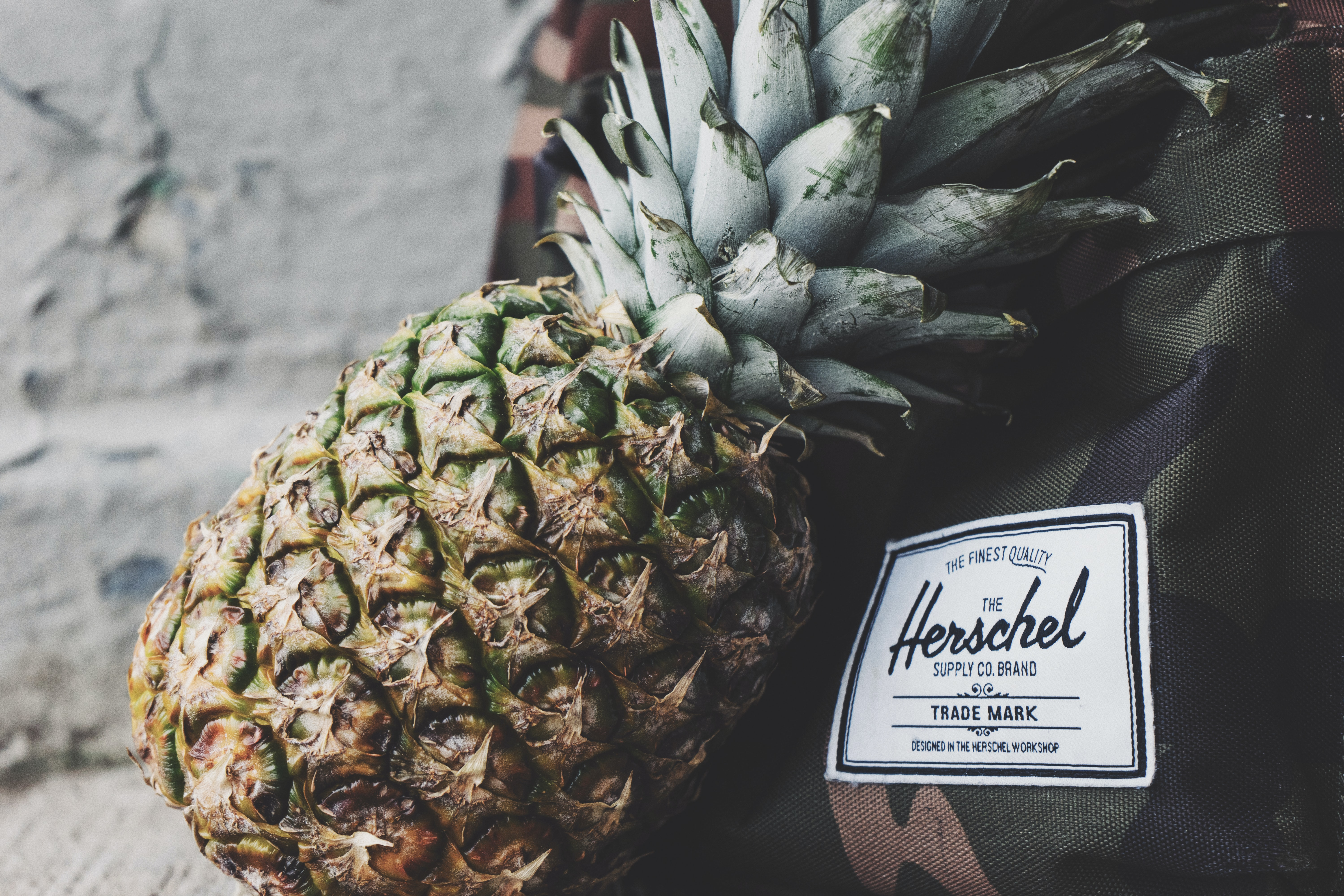 A pineapple leaning against a backpack.