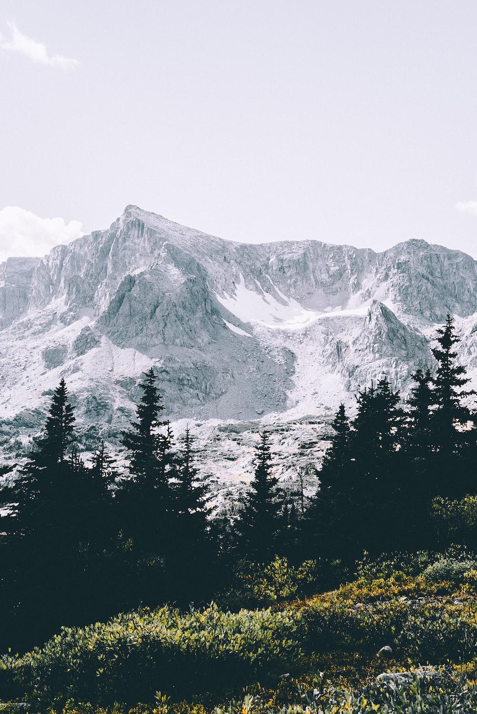 snowy mountain near green pine trees under cloudy sky