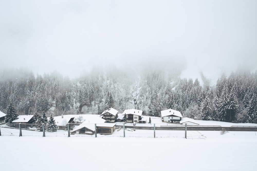 snow covered houses near trees
