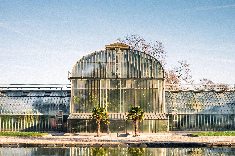 glass house plant