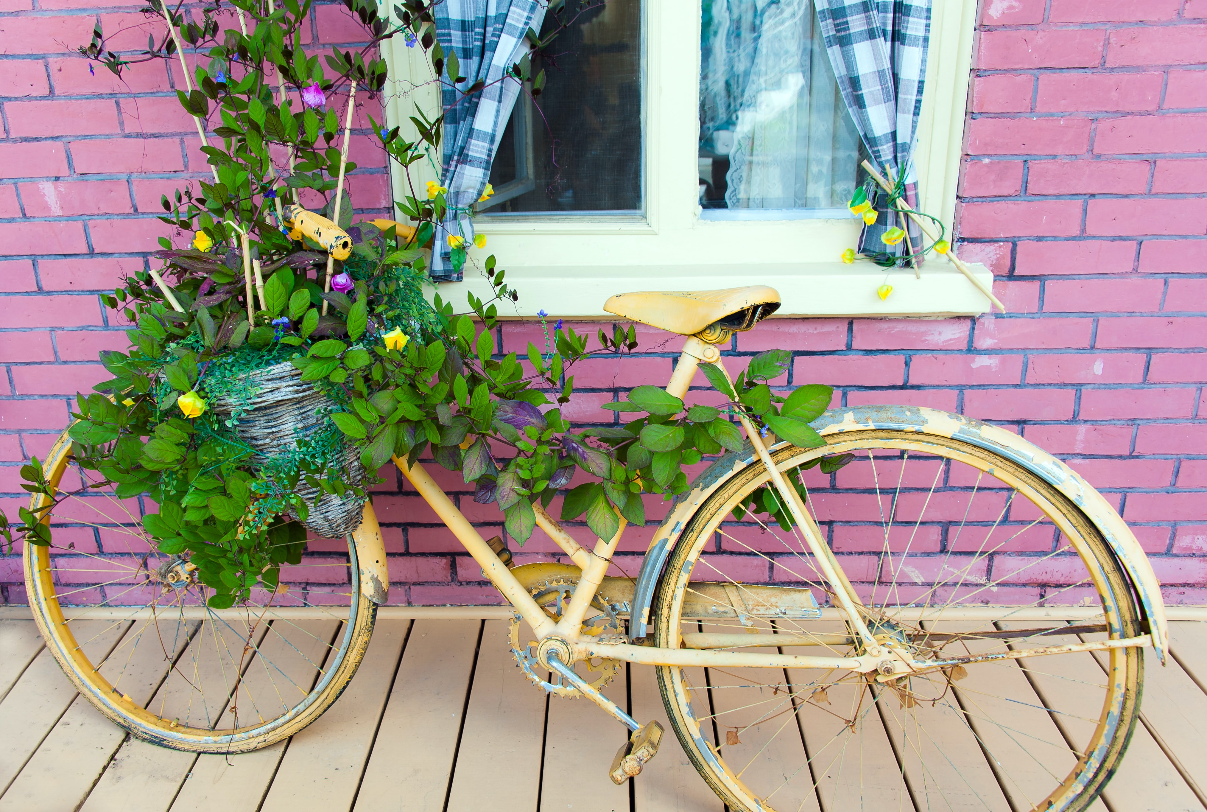Yellow bicycle with cracked paint aside a pink brick wall, its basket used as a planter